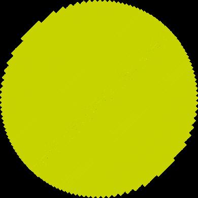 Citra-1.png